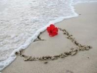 Romantikus álmodozás – testvaj