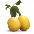 Mandula-marula arckrém