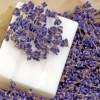 Ötletek a levendula illóolaj kombinálásához, elsősorban szappanban